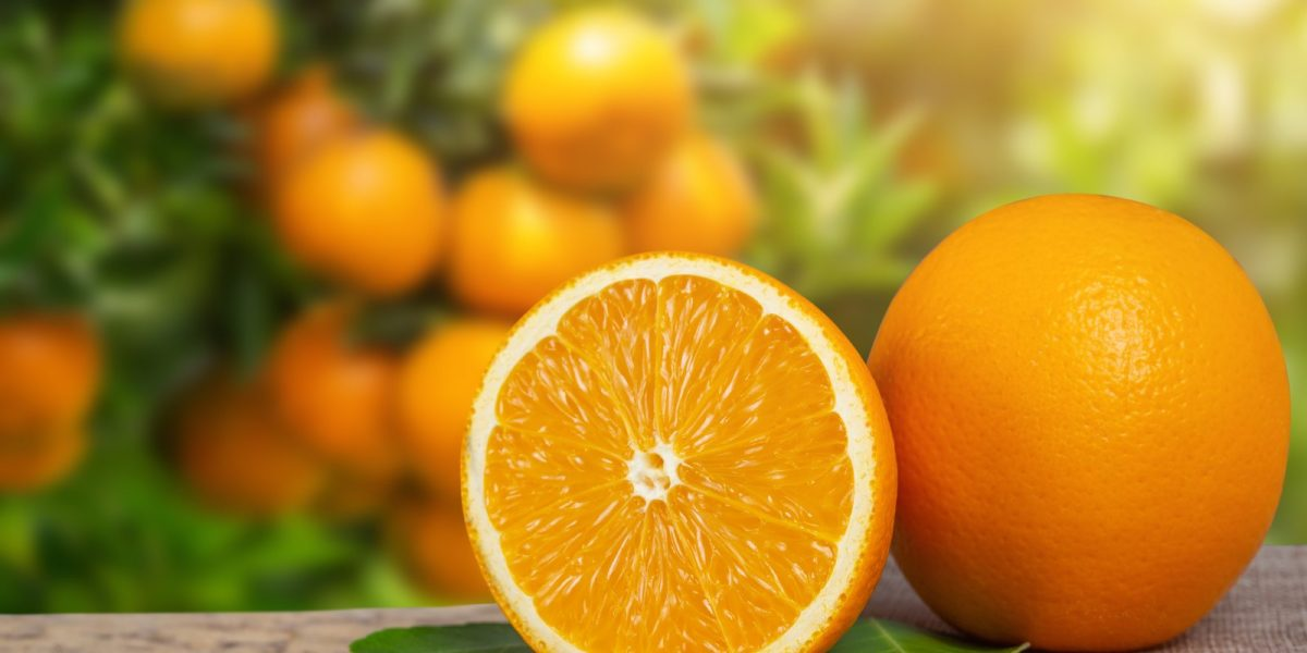 citrus-fp